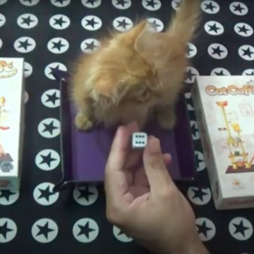 Videos: Cat Cafe – Como se juega y Partida